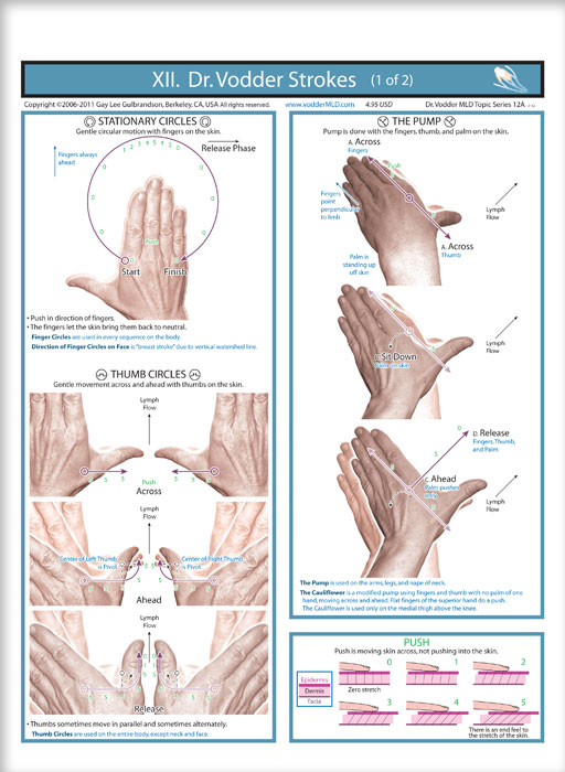 Voddermld b live and learn manual lymph drainage the basic strokes illustrated and explained in plain language correct locations for use of the strokes condensed basic principles explanation of skin solutioingenieria Choice Image
